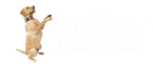Love Them,Train them