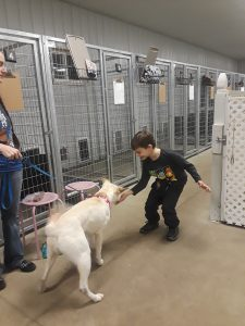 Jericho training ChiChi at Chelsea Canine Country Club